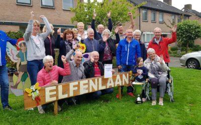 Oudgenoegstraat wint Straatverlichtingsprijs