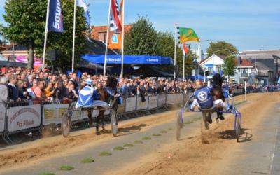 Paarden Stal de Groningers in topvorm naar Roden